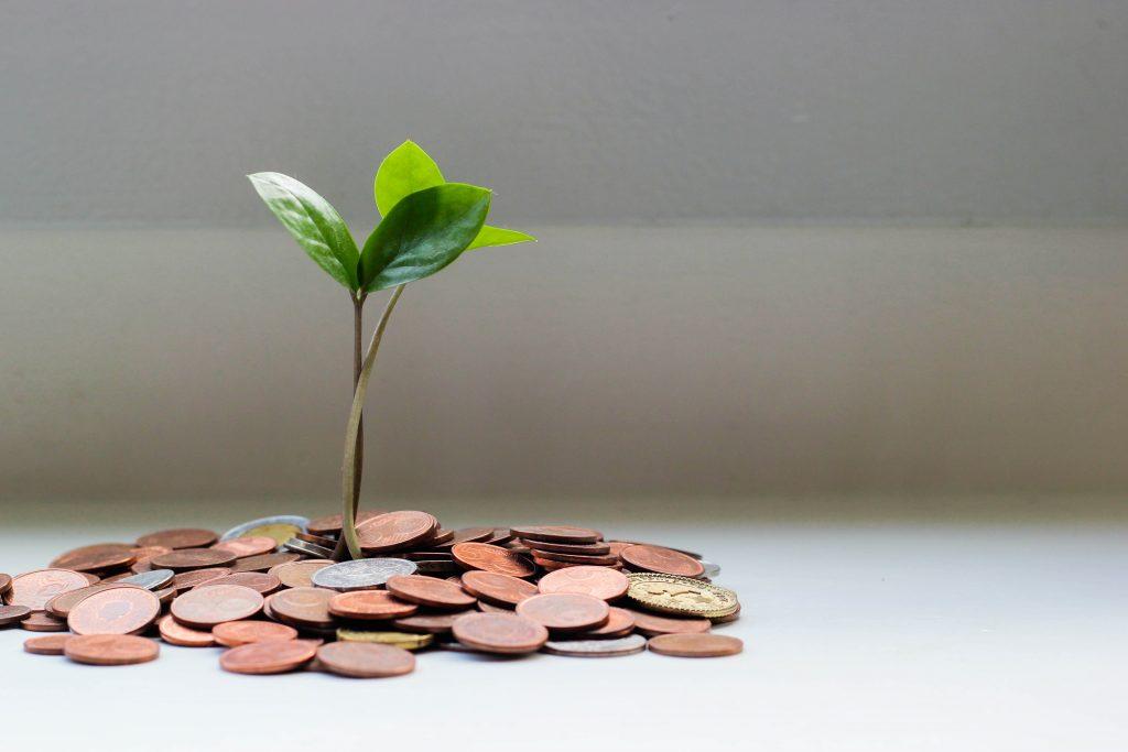 Ewebguru Affiliate Marketing Offers An Attractive Opportunity To Earn 1